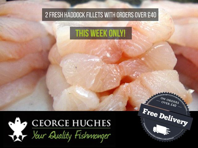 Haddock-Offer-Blog